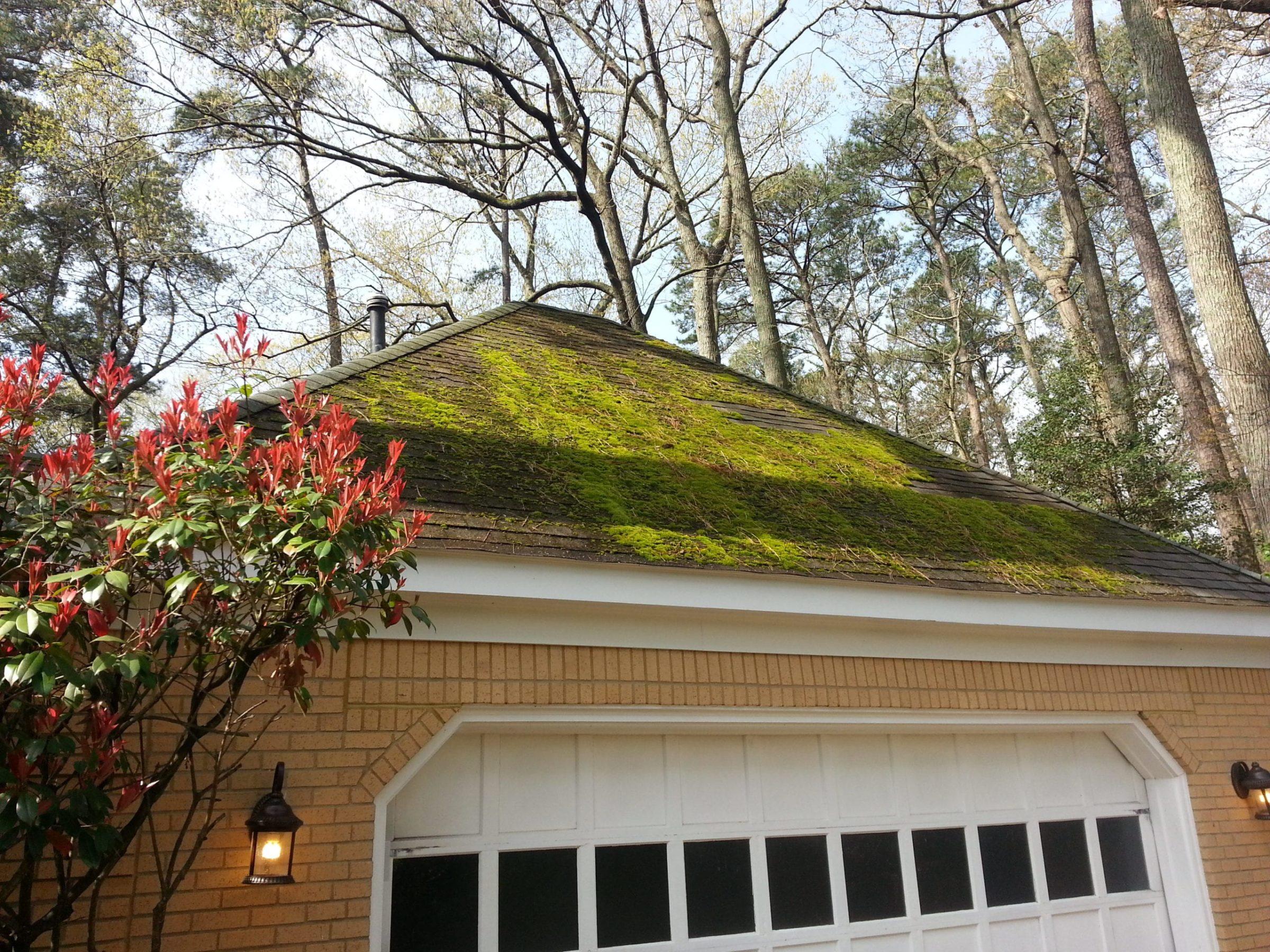 Roof Cleaning Newport News Va Envirowash Of Va Inc