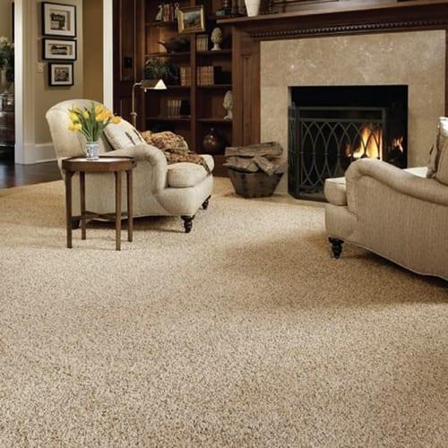 Carpet Cleaning Newport News Hampton Roads Amp Yorktown Va